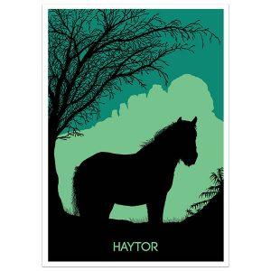 Haytor Print